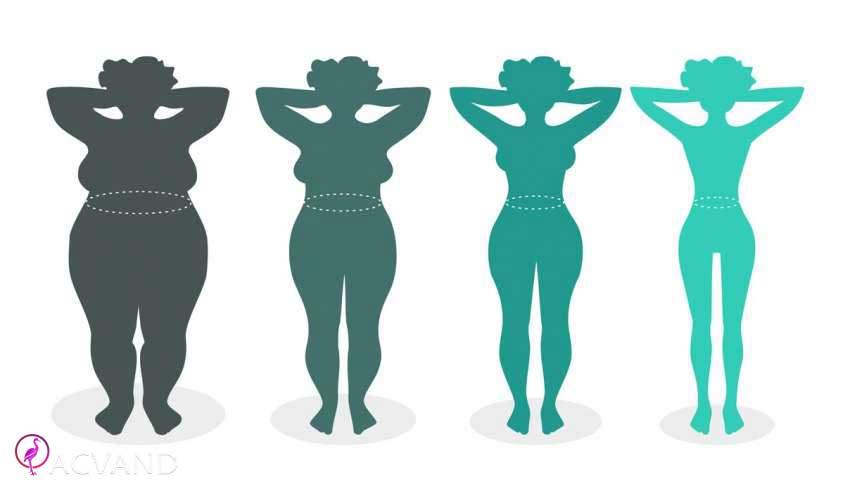 تیپ های وزن بدنی