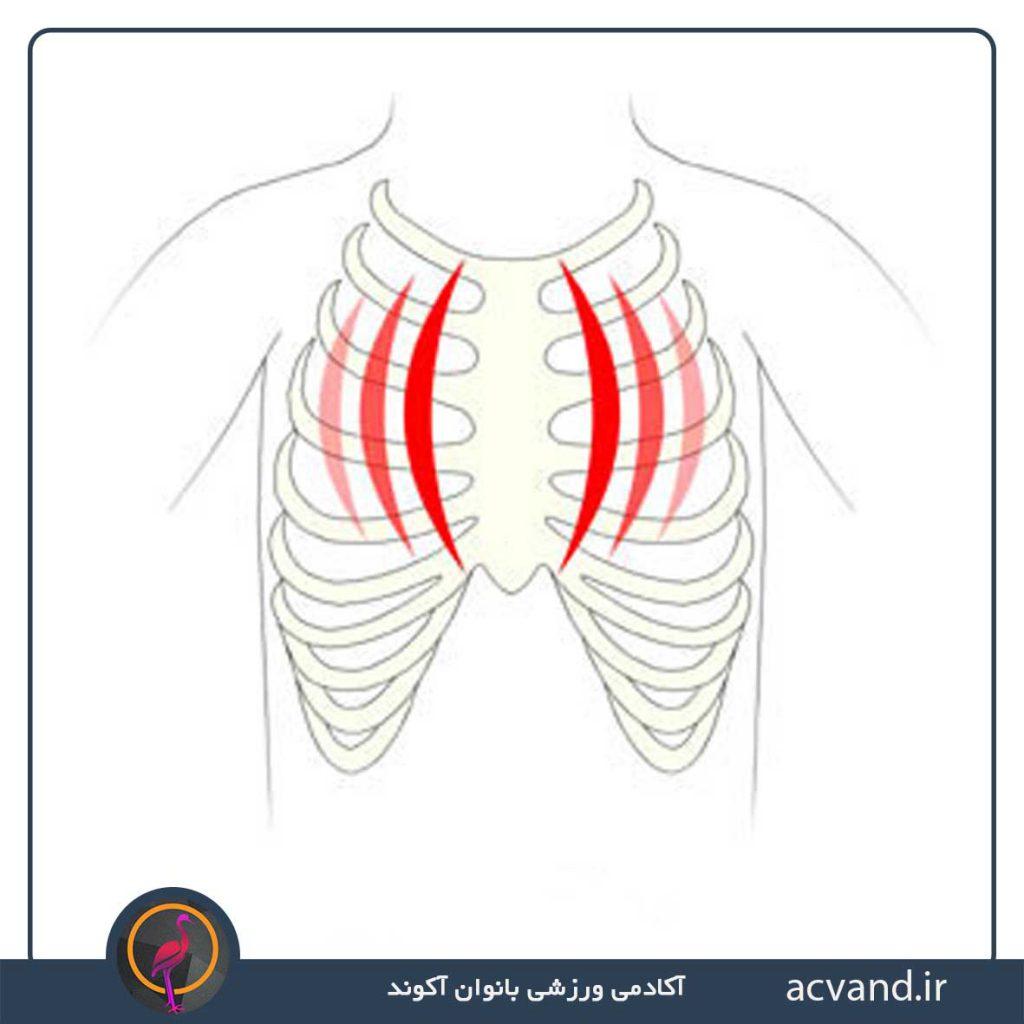 علائم درد پستان